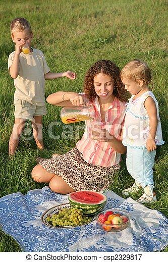 family`s picnic - csp2329817