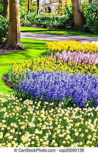 Famoso holanda parque keukenhof jardines hermoso - Jardines de holanda ...