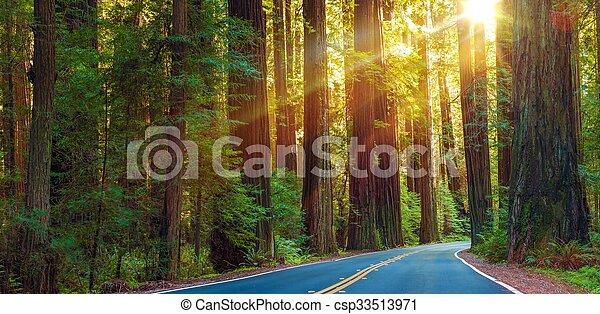 Famosa autopista de madera roja - csp33513971