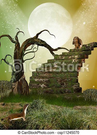 fantasía, jardín - csp11245070