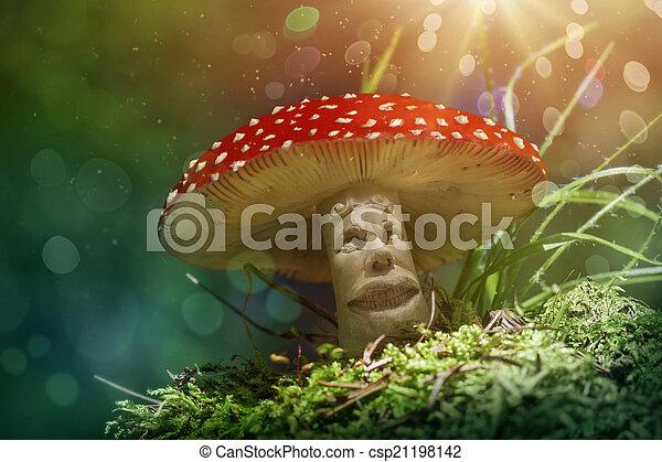 fantasia, fungo - csp21198142