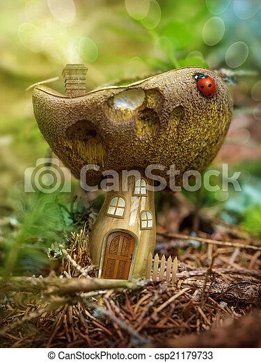 fantasia, fungo, casa - csp21179733