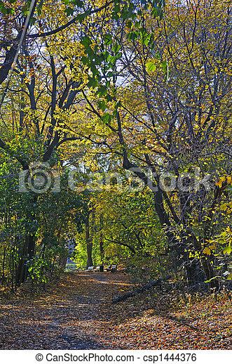 fantasie, park, dreamland:, steegje - csp1444376