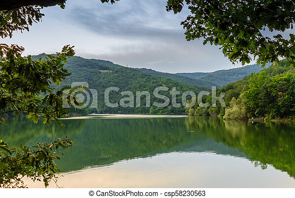 Fantastic view of the mountain green lake with reflection and the branches of a oak, Serbia, Europe - csp58230563
