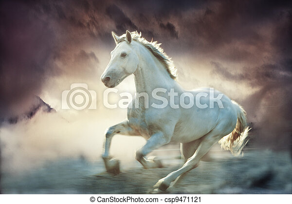 fantasy horse - csp9471121