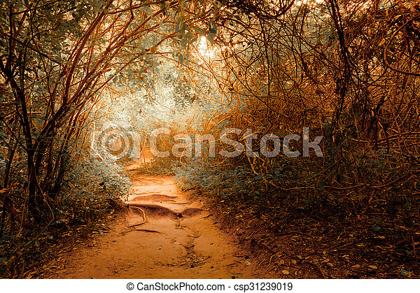 Fantasy landscape at tropical jungle forest with tunnel - csp31239019