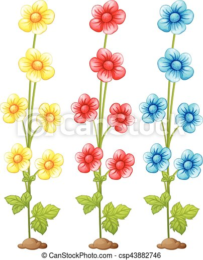 Ziemlich Blumen Zum Einfärben Zeitgenössisch - Beispiel ...