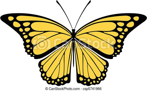 Farfalla Monarca Vettore Farfalla Vettore Fondo Oggetti