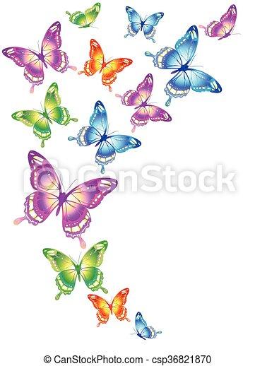 Farfalle disegno for Immagini farfalle per desktop