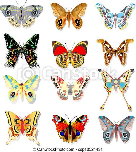 farfalle, set, fondo, colorito, bianco - csp18524431
