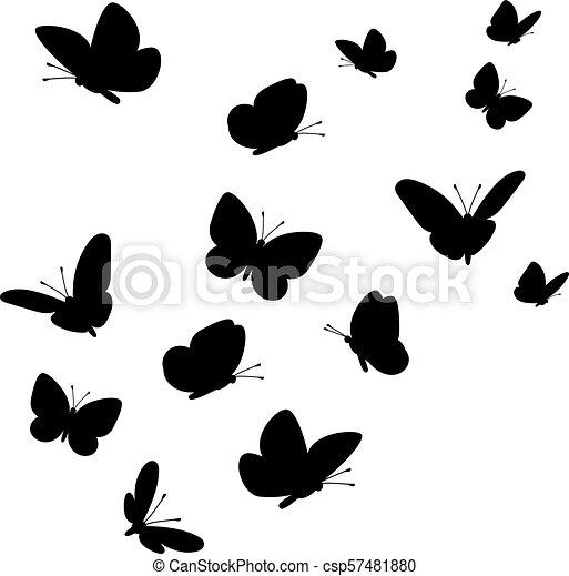 Farfalle Volare Silhouette Farfalla Set Silhouettes Volare