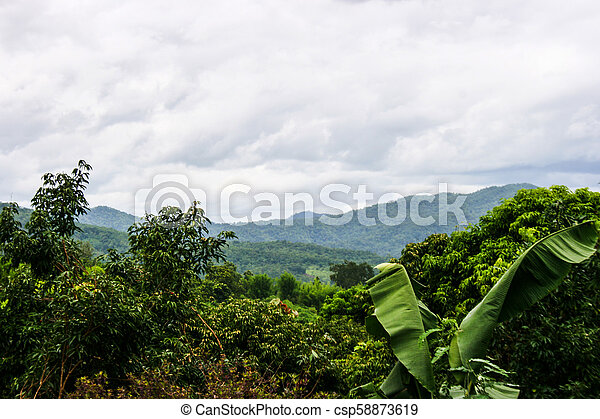 Farm and scenic view of mountains and sky in northern Thailand. - csp58873619