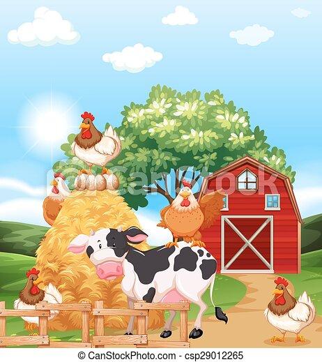 Farm animals - csp29012265