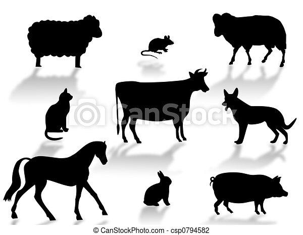 Farm animals - csp0794582