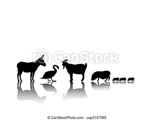 farm animals - csp3147085