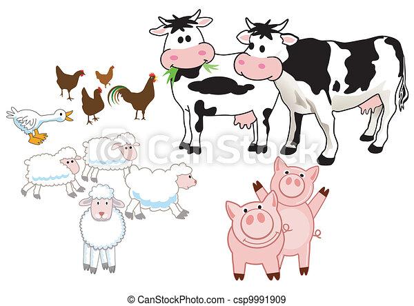 farm animals - csp9991909