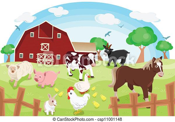 Farm animals - csp11001148