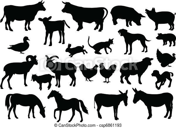 farm animals - csp6861193