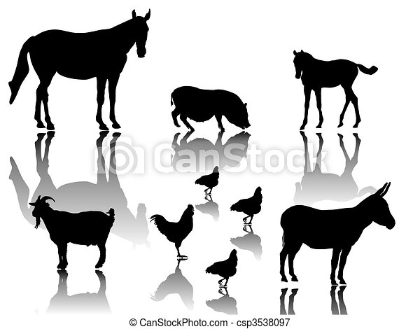 farm animals - csp3538097