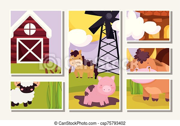 farm animals pig horse bull goat windmill barn scene cards - csp75793402