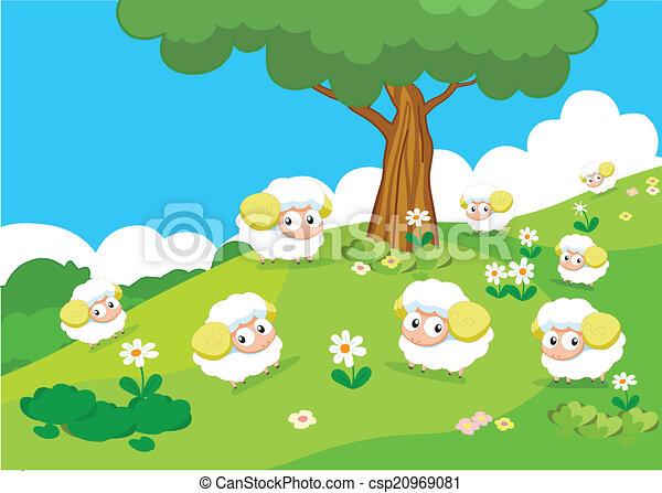 Farm animals with sheeps - csp20969081