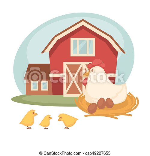 farm barn or farmer household chicken hatch vector flat design farm