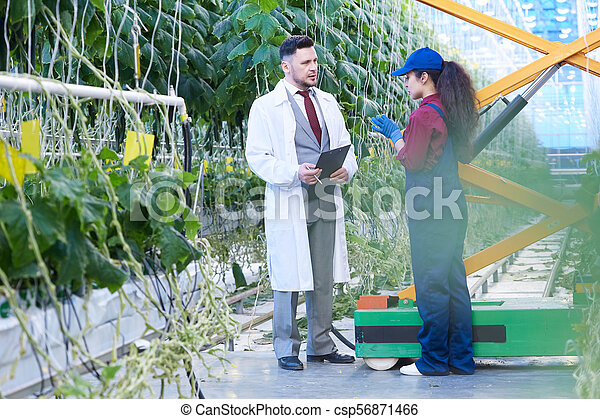 Farm Breeder Talking to Female Worker in Plantation - csp56871466