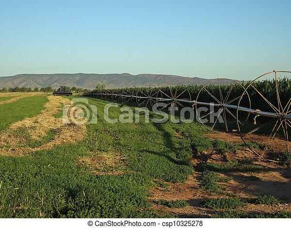 Farm Field - csp10325278