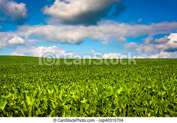 Farm fields in rural Baltimore County, Maryland. - csp40310704