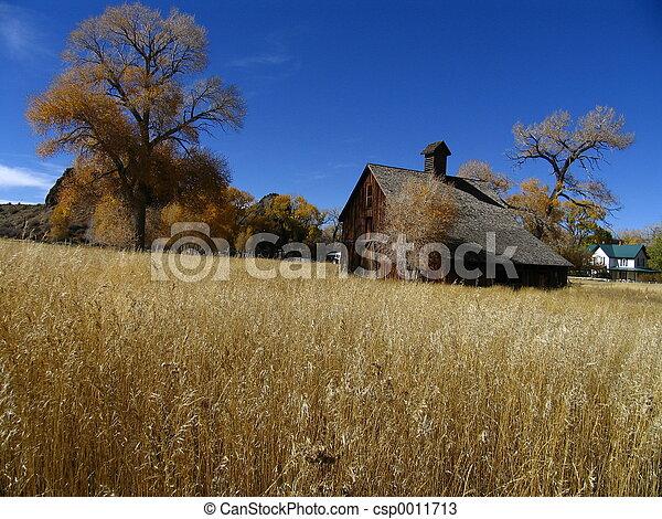 Farm house - csp0011713