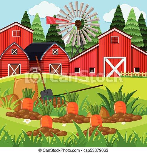farm scene with carrot garden illustration