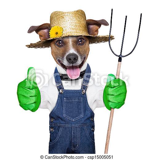 farmer dog - csp15005051