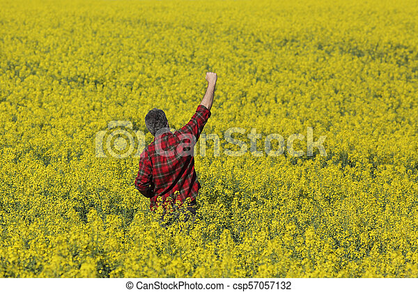 Farmer gesturing in blossoming rapeseed field - csp57057132