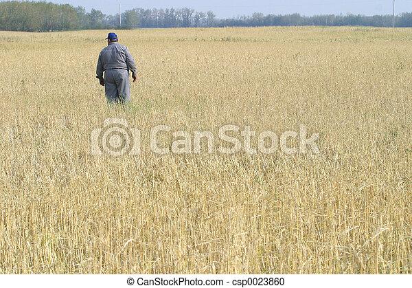 farmer in field - csp0023860