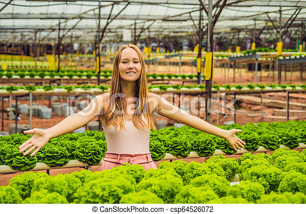 Farmer researching plant in hydroponic salad farm. Agriculture and scientist concept - csp64526072