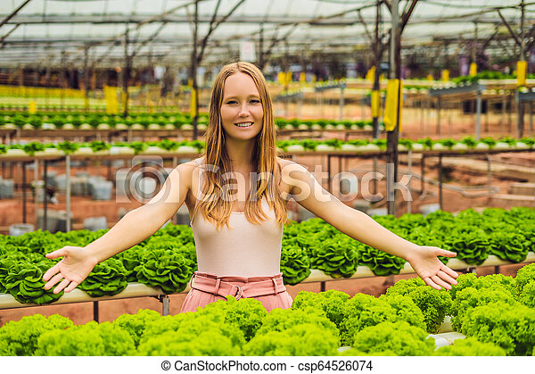 Farmer researching plant in hydroponic salad farm. Agriculture and scientist concept - csp64526074