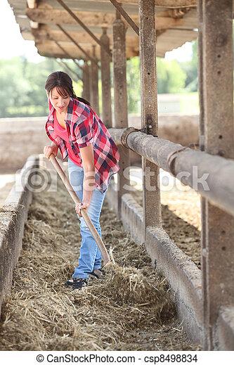 Farmer - csp8498834