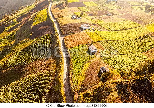 Farming In Ecuadorian Andes Aerial Shot - csp31365906