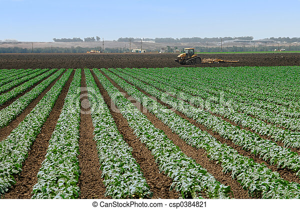 Farming - csp0384821