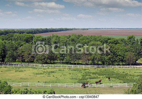 farmland and herd of horses in corral aerial view - csp13940847