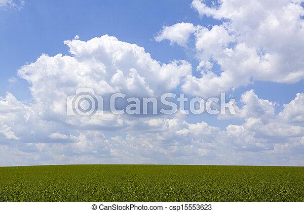 Farmland Background - csp15553623