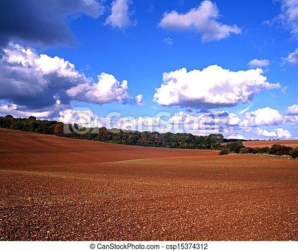 Farmland, England, UK. - csp15374312