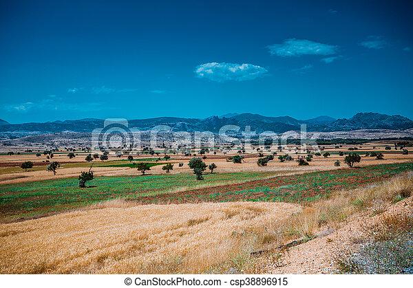 farmland - csp38896915