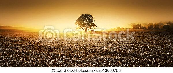 Farmland - csp13660788