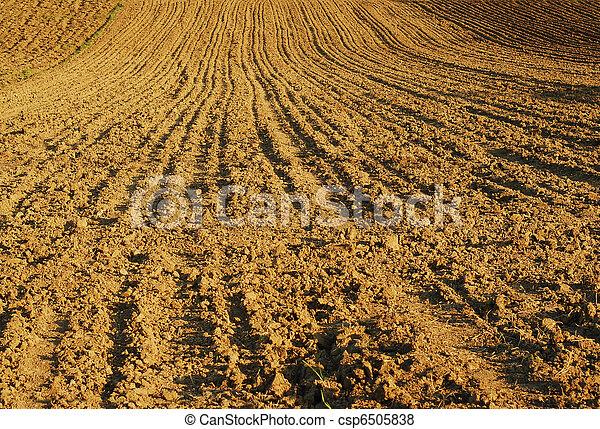 farmland - csp6505838