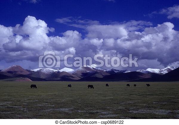 Farmland - csp0689122
