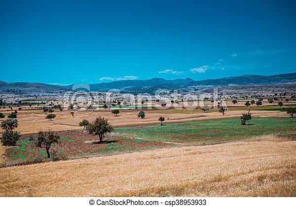 farmland - csp38953933