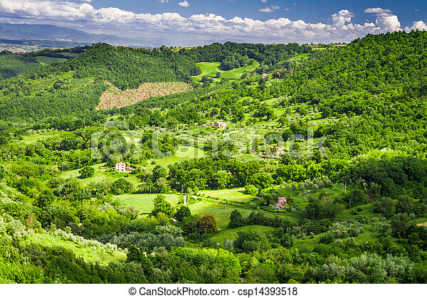 Farms with fields of olives and grapes - csp14393518