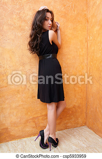 Fashion photo of a young beautiful lady in dress with nice shoes - csp5933959
