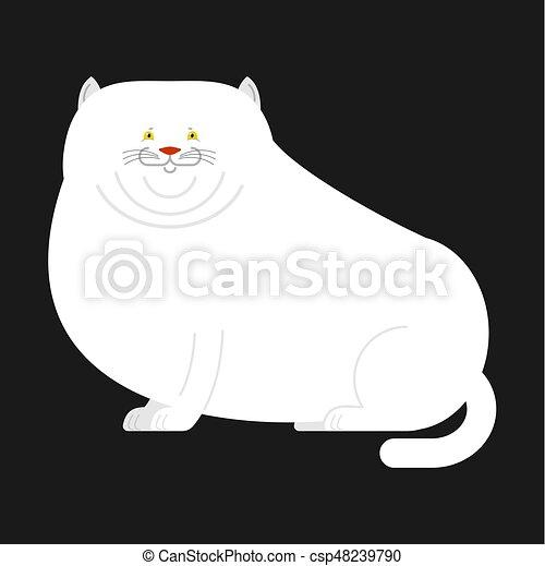Senseless. Big fat white